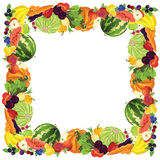 Border with ripe vegetable,. Fruits and berry Stock Images
