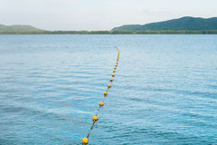 Border of safety area marked with line. Of yellow plastic buoys Royalty Free Stock Image