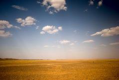 Border of Sahara. Landscapy of the stony border of Sahara in Morocco Royalty Free Stock Image