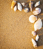 Border from seashells on sand stock photography
