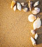 Border from seashells on sand Stock Photography