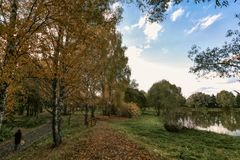 Border of summer and fall. The girl in the park goes on border of summer and fall Royalty Free Stock Images