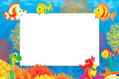Border for summer photo Royalty Free Stock Images