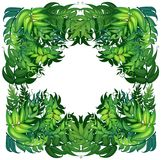 Border template with green leaves. Illustration Stock Images