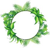 Border template with green leaves. Illustration Stock Photo
