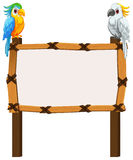 Border template with two macaws Stock Photo