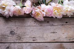 Border from tender pink  peonies flowers on aged wooden backgrou Stock Photo