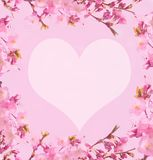Border or texture with cherry blossoms and heart. Romantic border or texture  with cherry blossoms on pink background with a heart royalty free illustration