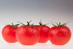 Border of tomato on a white background.  Macro. Texture. Gradient. Tomato pattern. Royalty Free Stock Photography