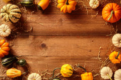 Border of various squash gourds with copy space Royalty Free Stock Photo