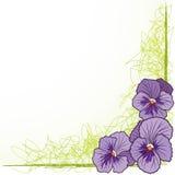 Border with  violet pansies. Vector floral  border with violet pansies (EPS 10 Royalty Free Stock Image