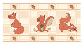 Border for wallpaper with squirrels Royalty Free Stock Photography