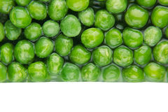 Border of wet fresh green peas in water closeup on white background. Stock Photography