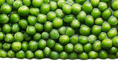 Border of wet fresh  green peas in water closeup on white background. Royalty Free Stock Photography