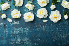 Border of white rose flowers and green leaves on teal vintage background from abovein flat lay styling. Stock Images
