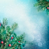 Border winter nature background Stock Photography
