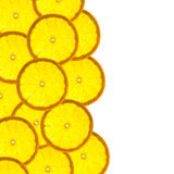 Border With Citrus-fruit Of Orange Slices Stock Images