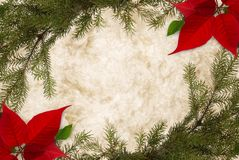 Bordered Christmas Parchment. Classical Christmas background on parchment, bordered with fir twigs and poinsettia stock photography