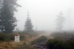 Borderline Bollard Along Footpath in Foggy Forest Royalty Free Stock Photo