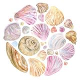 Colorful watercolor shells in round composition royalty free illustration