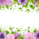 Borders With Flowers Stock Images