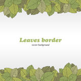 Borders of foliage. On white background. Vector Illustration Royalty Free Stock Photos