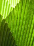 Bordes de intersección Imagen de archivo libre de regalías