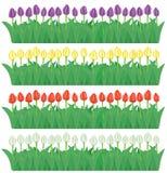 Bordi del fiore impostati (vettore, CMYK) Immagini Stock