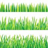 Bordi dell'erba Fotografia Stock