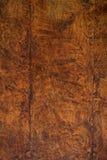 Bordi della quercia Fotografia Stock Libera da Diritti