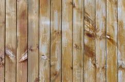 Bordi di legno Immagini Stock