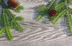 Bordi di legno del fondo di Natale vecchi Immagini Stock Libere da Diritti