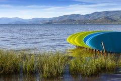 Bordi di pagaia sulle rive del lago Tahoe, California Immagini Stock