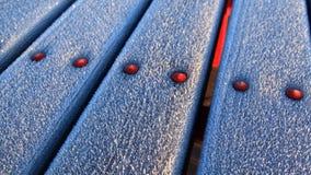 Bordi ghiacciati Fotografie Stock Libere da Diritti