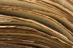 Bordi medievali del libro Immagini Stock Libere da Diritti