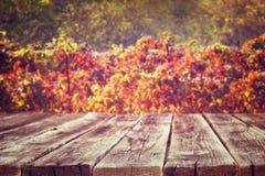 Bordi rustici di legno davanti al fondo della vigna in autunno aspetti per l'esposizione del prodotto Immagine Stock