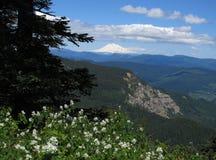 Bordlägga berg Arkivfoton