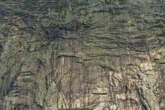 Bordo bianco della montagna Immagine Stock