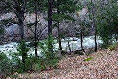 Bordo dei fiumi fotografie stock