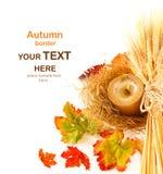Bordo dei fogli di autunno fotografie stock libere da diritti