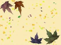 Bordo dei fogli di autunno Immagini Stock Libere da Diritti