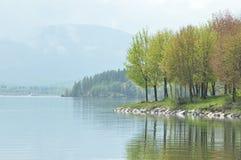 Bordo del bacino idrico. Lago mara Immagini Stock