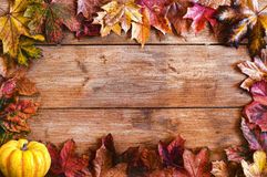 Bordo del blocco per grafici dei fogli di autunno Fotografie Stock