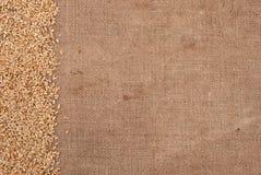 Bordo del frumento sulla priorità bassa della tela da imballaggio Immagine Stock Libera da Diritti