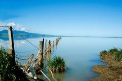 Bordo del terreno coltivabile al bello lago. immagine stock libera da diritti