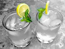 Bordo dell'acqua del limone fotografia stock libera da diritti