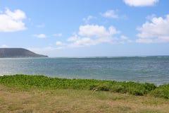 Bordo dell'oceano su erba verde Fotografia Stock Libera da Diritti