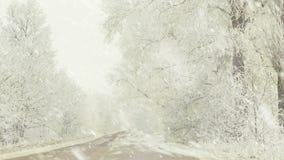 Bordo della strada rurale alle precipitazioni nevose archivi video