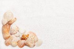 Bordo delle coperture del mare sul tovagliolo lanuginoso bianco Fotografia Stock