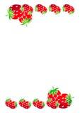 Bordo delle fragole fotografie stock
